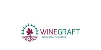 wINEGRAFT-324x160