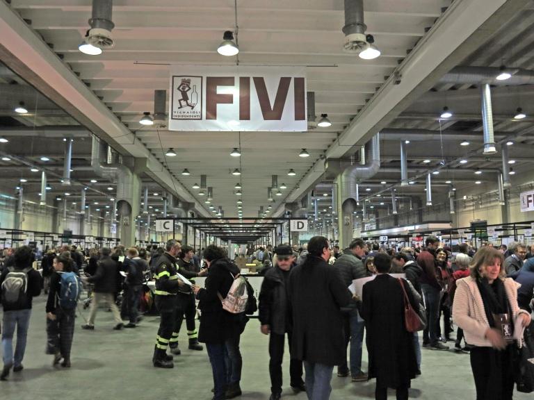 FIVI 1.jpg